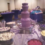 chocolate fountain for Sheraton convention