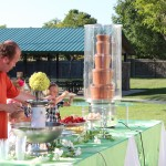 Chocolate Fountains in Farmingtonn Utah